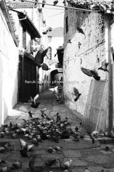 Old Bazaar, by Faruk Shehu (12)