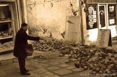 Old Bazaar, by Faruk Shehu (14)